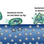 Argintul coloidal distruge microbii si celulele tumorale