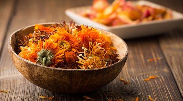 GĂLBENELE : Planta minune pentru arsuri, ulcer, acnee si hemoroizi