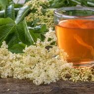 Ceaiul de Soc are efect miraculos daca este preparat corect