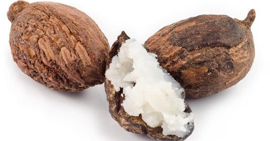 Proprietatile nutritive ale untului de shea asupra pielii tale