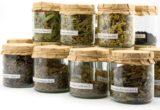 CINCI Plante minune care topesc grăsimea de pe burtă