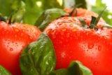 Super-dieta sanatoasa cu rosii si busuioc. 4 kg in 7 zile