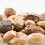 Uleiul de argan este eficient în tratamentul tuturor tipurilor de psoriazis