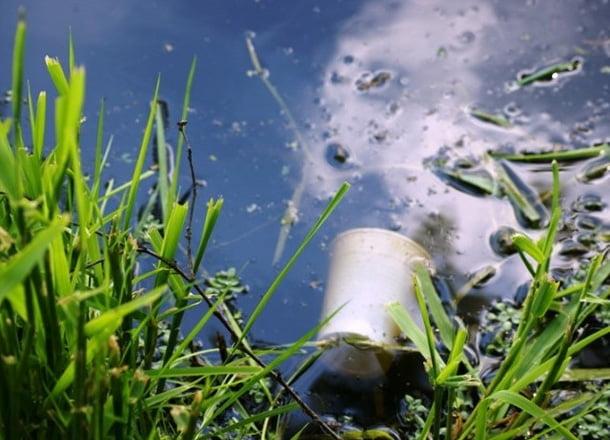 Studiu: Cercetătorii au descoperit că în corpul uman există depozite de substanţe toxice precum mercurul, arsenicul sau plumbul