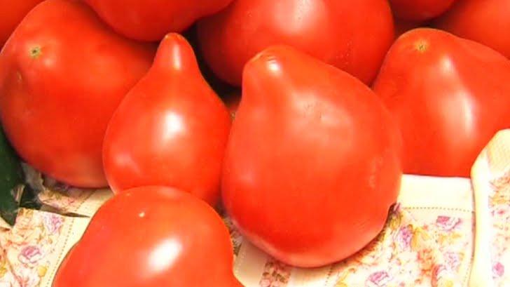 Roșiile țuguiate din import sunt un PERICOL pentru sănătate