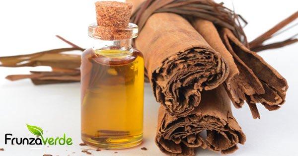 9 Proprietati UIMITOARE ale uleiului de SCORTISOARA