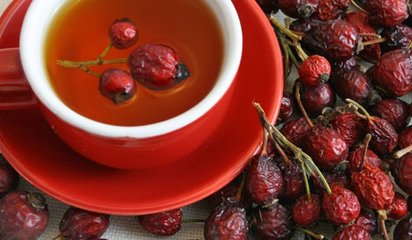 ceai-macese
