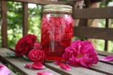 Oțetul de trandafir, leac rapid împotriva febrei