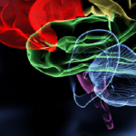 Metode simple de prevenire a pierderilor de MEMORIE