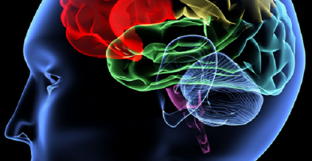 Electrical-Stimulation-is-the-new-hope-for-Memory-Loss
