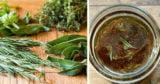 Plantele remediu care fac minuni pentru creier. Reteta celui mai bun tonic cerebral