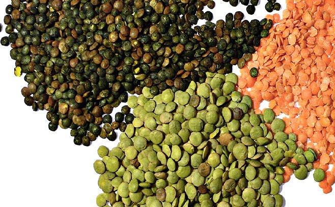 40-high-fiber-foods-you-must-try-v2-1
