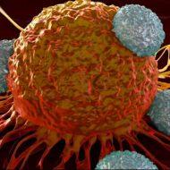 De ce se răspândeşte aşa rapid cancerul în tot corpul? Descoperire remarcabila făcută de medici