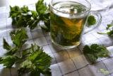Reteta ceaiului de urzici – Cum se prepara corect puternica bautura vindecatoare