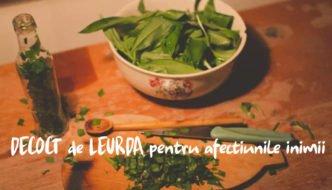 Cum se prepara faimosul DECOCT de LEURDA recomandat pentru afectiunile inimii
