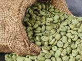 "Bogata in antioxidanti si lipsita de efecte adverse – Cafeaua verde ""topeste"" grasimile"