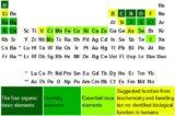 Cele 11 minerale esentiale pentru sanatatea organismului