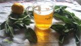 Reteta Ceaiului de Salvie:  Cum se prepara corect si secretul pentru a avea efect maxim